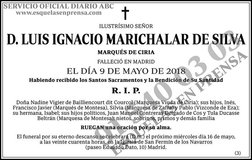 Luis Ignacio Marichalar de Silva